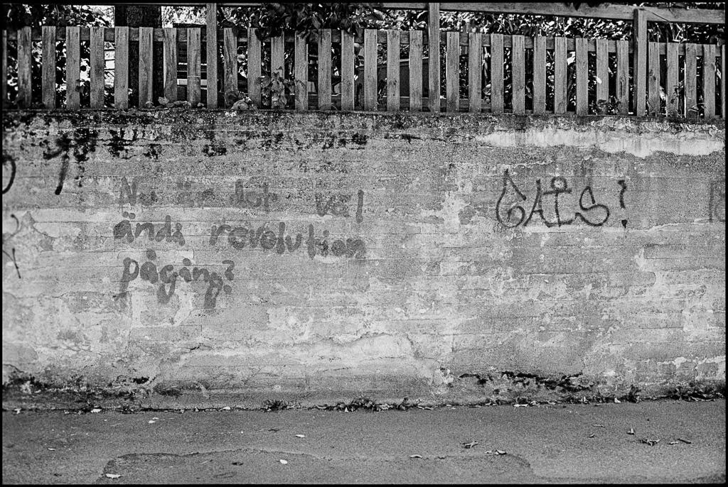 140809 Leica M6 TriX@400 Voigtlander 35/11,4, Rodinal 1:50