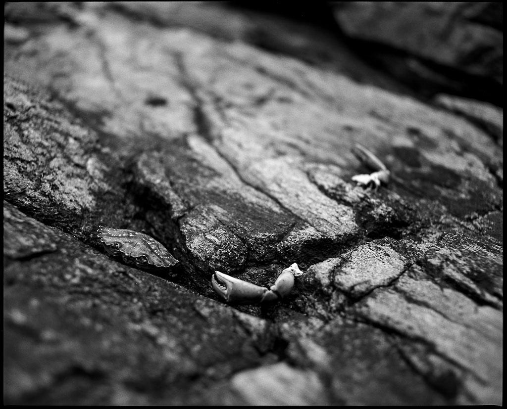 20120721_falling_apart1-2